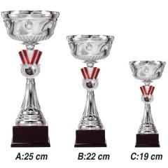 Ankara Spor Dalları İçin Kupalar 3319