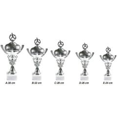 Ankara Spor Dalları İçin Kupalar X0110